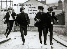 arachnophobia added to Beatlemania ,,