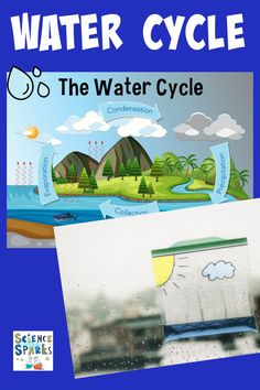 Easy water cycle demonstration or water cycle experiment for kids. Use a plastic bag to demonstrate the water cycle or a bowl covered in cling film. Science Experiments Kids, Science For Kids, Water Cycle Model, Weather Science, Earth And Space Science, Meteorology, Creative Thinking, Plastic, Activities