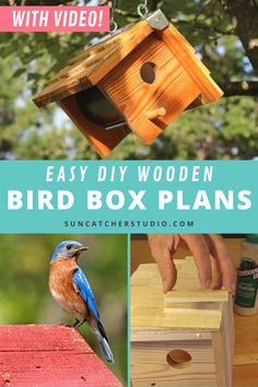 How to make a beautiful bird garden at your home and attract all sorts of unique and beautiful birds to your backyard with this easy to make wooden birdhouse. Designs and step by step directions available plus an easy to follow tutorial video on how to make this birdhouse. These easy birdhouse plans can be made with cedar or pine. Simple but beautiful this bird box design is fun for kids to get involved with building and is a fun outdoor project. Check out the video now! Diy Projects For Beginners, Cool Diy Projects, Decor Crafts, Wood Crafts, Bird Feeder Plans, How To Waterproof Wood, Bird House Plans, Birdhouse Designs, Bird Houses Diy