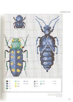 Gallery.ru / Фото #41 - Corinne Lacroix - Insectes - velvetstreak
