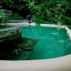 a Frank Lloyd Wright swimming-pool, Fallingwaters, FL