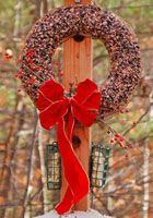 Bird Feeder Crafts -- multiple ideas here, including milk jug feeders, pine cone feeders, and more.