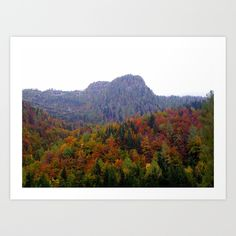 Alps, Fall, Autumn, Mountain, Forest, Trees, Leaves, Red, Green, Yellow, Sunlight, Landscape, Photo, Wallart, homedecor