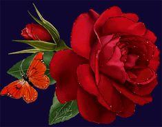 felicitari zi de nastere,aniversare,imagini,ecards,primavara,vara,text,mesaje,gif,imagini miscatoare,poze,urari,noapte buna,buna dimineata,urari,love