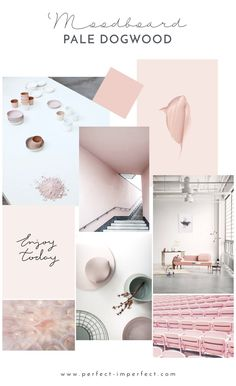 Spring 2017 MOODBOARD 2/3 - Pale Dogwood (blush pink) by  www.perfect-imperfect.com