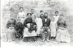 Mary Evelette Johnson, my 2nd Great Grandmother, and her parents, my 3rd Great Grandparents,Permelia Jane Smith Johnson and Warren Marshall Johnson and siblings. This photo was taken before the Diptheria outbreak in 1891