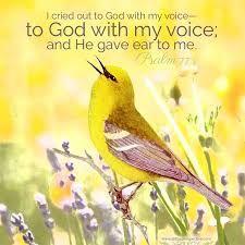 Resultado de imagen para Psalms 77:1-2 with photo