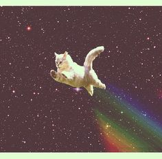 Flying galaxy cat! ^v^