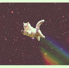 Flying galaxy cat! ^v^