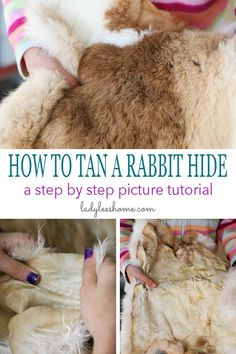 A step-by-step picture tutorial on how to tan a rabbit hide. You can use this simple method to tan any small animal hide fur-on. A step-by-step picture tutorial on how to tan a rabbit hide. Tanning Deer Hide, Tanning Hides, Rabbit Hide, Rabbit Farm, Raising Rabbits For Meat, How To Tan, Rabbit Hutches, Backyard Farming, Hobby Farms