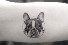 The web's most awesome dog memorial tattoo designs. Small Dog Tattoos, Memorial Tattoos Small, Best Small Dogs, Best Dogs, Bulldogge Tattoo, Boston Terrier Tattoo, Dog Outline, Celtic Tattoos, Dove Tattoos