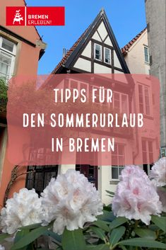 Germany, Travelling, Summer Vacations, Caribbean, Tourism, Viajes, Tips, Deutsch