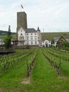 Castle Bromserburg