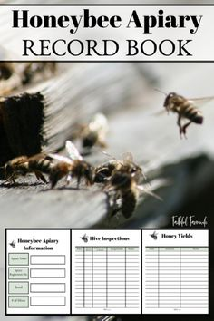 High Quality Bio Dynamic Beekeeping Video Course For Beginners Save The Bees