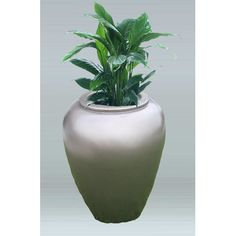 Allied Molded Products Round Pot Planter Color: Paprika