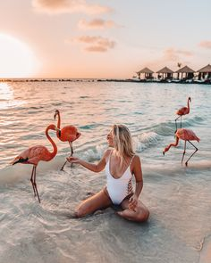 "Aruba is the perfect romantic getaway for couples. From its beautiful beaches, luxurious resorts to the world-famous pink flamingos, Aruba is the ideal honeymoon destination. Come learn the best way to visit Aruba and what are fun things to do in this ""O Romantic Vacations, Romantic Getaways, Romantic Travel, Dream Vacations, Beach Vacations, Aruba Honeymoon, Aruba Aruba, Visit Aruba, Caribbean"