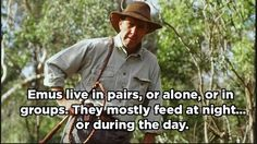 There is a fine art to monitoring animals. 17 Important Aussie Lessons According to Russell Coight Australian Memes, Aussie Memes, Funny Love, You Funny, Funny Stuff, Funny Things, Random Stuff, Russell Coight, Australia Funny