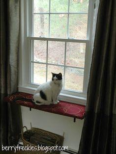 DIY Cat Perch {Berry Freckles}