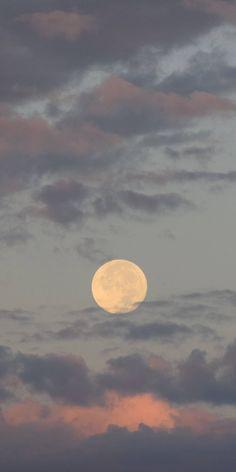 Moonlight... 🌃