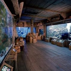 Shipwreck at Downtown Aquarium Houston, TX #Kids #Events