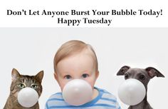 Don't let anyone burst your bubble today! Happy Tuesday Images, Happy Tuesday Quotes, Tuesday Humor, Happy Monday, Have A Happy Day, Good Morning Happy, Beautiful Morning, Good Morning Quotes, Weekday Quotes