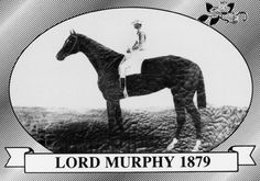 Lord Murphy | Winner of the 5th Kentucky Derby | 1879 | Jockey: Charlie Shauer | 9-Horse Field | $3,550 prize