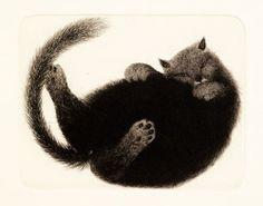 Ta meg Ola Steen I Love Cats, Cat Art, Photo Art, Stud Earrings, Artwork, Cat Illustrations, Painting, Touch, Photos