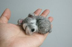 needle felted sleeping little schnauzer brooch ,pin,doll house decoration. £18.00