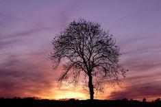 100 Stunning Sunset And Sunrise Photos