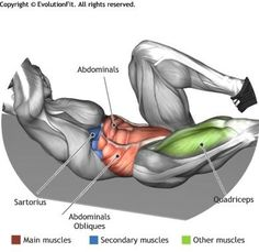 ABDOMINALS - CRISS CROSS