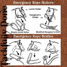 Not a bad idea to practice these incase my bridle ever breaks randomly on the trail.