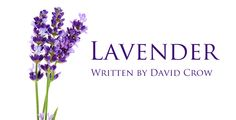 Great article by David Crow on Lavender Essential Oil. Available from Floracopeia. Click Image for more Info. http://www.floracopeia.com/About/Lavender/ #essentialoil #essentialoils #aromatherapy