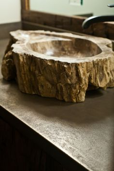 Elements Concrete Counter With Metallic. Petrified Wood Sink