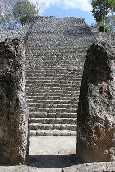 Calakmul . Campeche Mexico