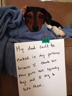 dogshaming man parts