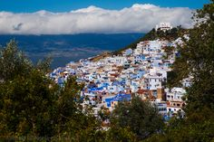 An Insight into the Blue City of Morocco Blue City, Moroccan Style, Day Trips, Layout Design, Mount Everest, To Go, Places To Visit, Explore, Adventure