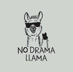 Save the drama for your lama! I love the drama lama Save the drama for your lama! I love the drama lama Alpacas, Me Quotes, Funny Quotes, No Drama Quotes, Shirt Quotes, Shirt Sayings, Humor Quotes, Funny Tshirts, Illustration