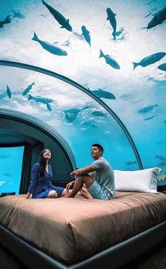 Adventure Travel Underwater hotel in Maldives. 20 Amazing Hotels In Striking Locations You Must Visi Vacation Places, Vacation Destinations, Dream Vacations, Places To Travel, Vacation Resorts, Beautiful Hotels, Beautiful Places To Visit, Amazing Hotels, Best Resorts