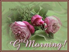 Good morning glitter roses graphic