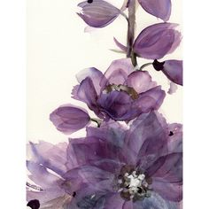 Modern Botanical Art Print, Delphinium, Large Archival Botanical Art (€37) ❤ liked on Polyvore featuring home, home decor, wall art, mod home decor, modern home decor, modern wall art and modern home accessories