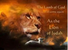 "Almost years ago Jesus Christ came in His coming as the sacrificial Lamb of God. In the future in His coming he will come in victory as the powerful Lion of Judah as a King. ""Behold, the Lion that is from the tribe of Judah, the Root of David… And I saw… Max Lucado Frases, Lion And Lamb, Tribe Of Judah, Jesus Is Coming, Prophetic Art, Lion Of Judah, Prayer Warrior, Spiritual Warrior, Scripture Art"