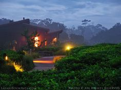 From Construction to Operation #Nyungwe #Lodge is Green. www.safaribookings.com/blog/123. This lodge in #Rwanda's Nyungwe Forest is the largest surviving tract of montane forest in East-Central #Sustainability #Sustainable #Lodge #Africa #Ecolodge