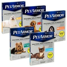 PetArmor for Dogs 3pk Small 1-22lbs * Unbelievable dog item right here! : Flea and Tick Control