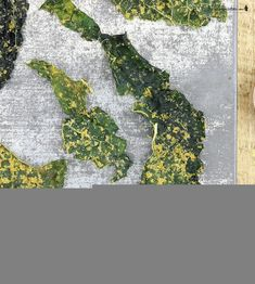"""Raw """"all dressed"""" kale chip recipe Kale Chip Recipes, Chips Recipe, Kale Chips"""