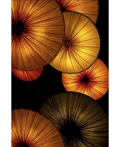 ~~ Golden Lantern Abstract by photographer Atsushi. Lanterns hanging in a hotel made for the perfect abstract image. Popular Photography, Art Photography, Umbrellas Parasols, Under My Umbrella, Abstract Images, Mellow Yellow, Yellow Black, Dali, Earth Tones