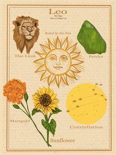 Zodiac Astrology Vintage Style Poster Leo | Etsy