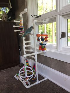Pet Bird DIY Ideas: Bird play stand made out of PVC and textured for easy climbing Cockatoo Toys, Budgie Toys, Homemade Bird Toys, Diy Bird Toys, Bird Play Gym, Parrot Play Stand, Hamster Bedding, Bird Stand, African Grey Parrot
