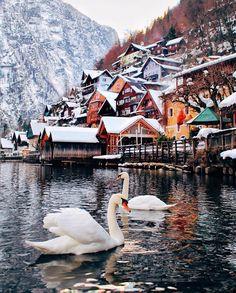 Esta pequeña villa alpina de 800 habitantes situada en Austria se llama Hallstatt y es uno de los lugares favoritos de las cuentas de viajes. Su belleza es tal que los chinos la replicaron al sur del país.