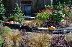 This whimsical garden railway at Longwood Gardens signals the arrival of fall! This years display featured this circus railroad, complet. Outdoor Projects, Wood Projects, Garden Railroad, Longwood Gardens, Garden Accessories, Garden Train, Indoor Outdoor, Yard, Layout