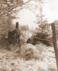 Typical view of GI's living in the Ardennes woods during winter 1945-45. This photo was realised on january 3, 1945 by Private A.H. Herz (U.S. Army Signal Corps) on the south-east frontline of Bastogne, not in the 17th AB Division area but in the 320th Infantry Regiment - 35th Infantry Division. The scene is very similar with the north west frontline (credit U.S. Army Signal Corps - TFH collection).